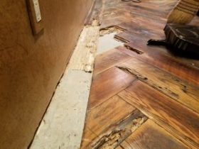 termite damaged wood floor